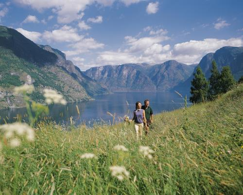 explore the fjords of Norway on an escorted tour