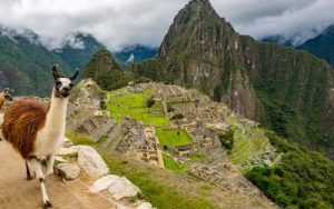 South America cruise and Machu Pichu